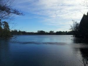 Vy över Stora Skärsjön