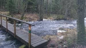 Högt vatten och svinhal bro.